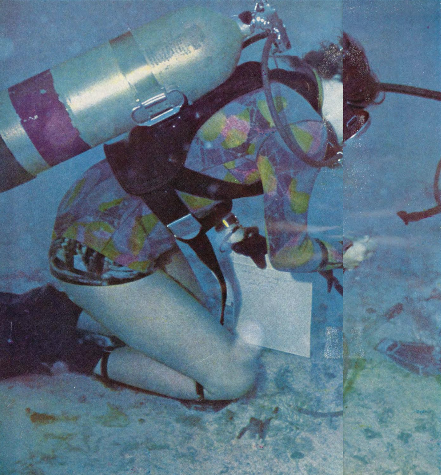 session-1-ann-hurley-sea-floor-spanmagazine-dec-1970.png